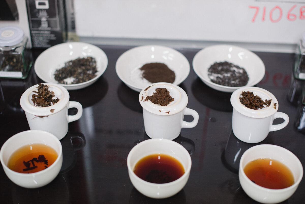 Elmstock tea tasting with BrewHub team.